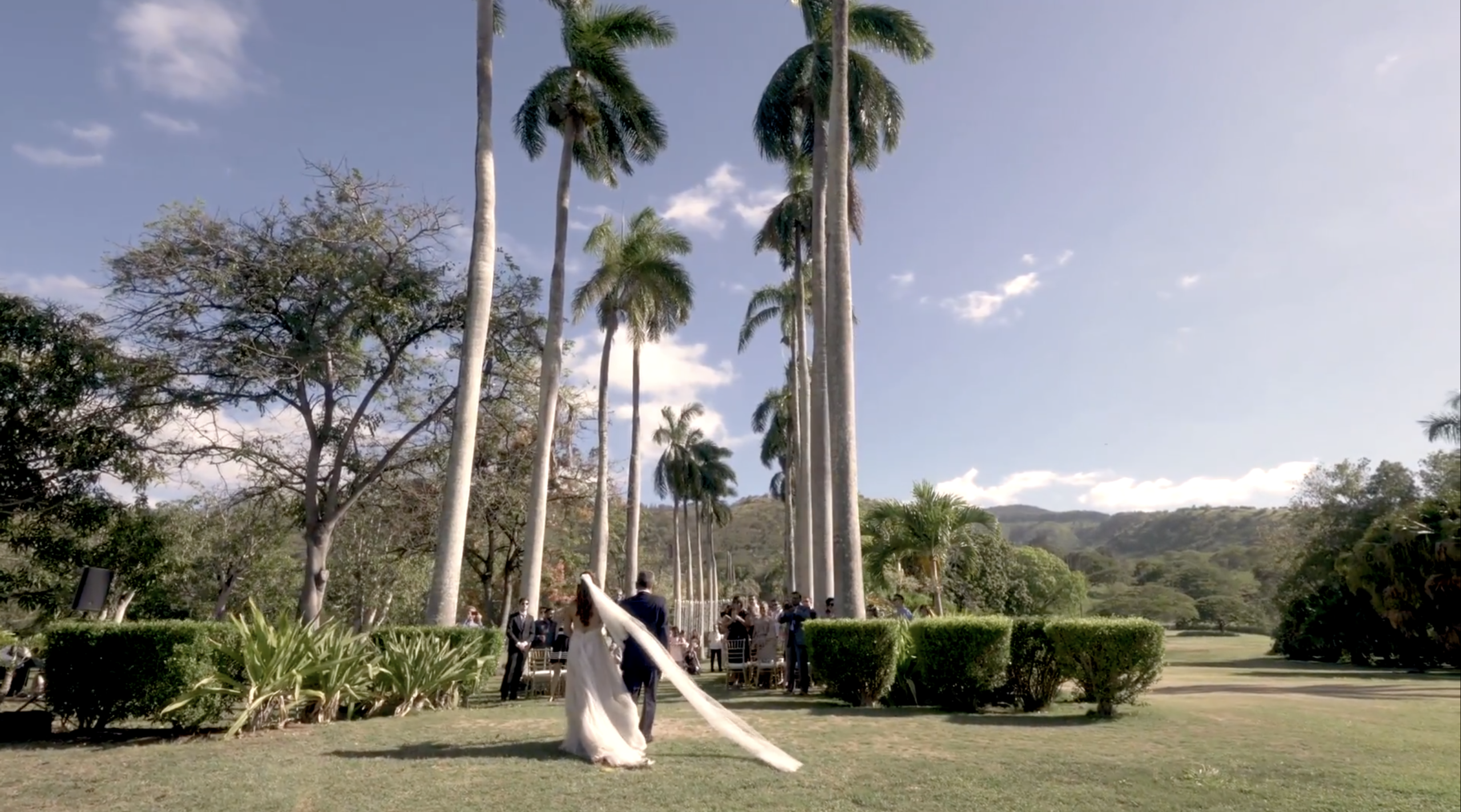 turtle bay wedding video